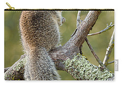 Carry-all Pouch featuring the photograph California Ground Squirrel by Doug Herr
