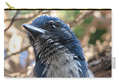 California Western Scrub Jay Carry-all Pouch