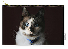 Calista Carry-all Pouch by Judy Whitton