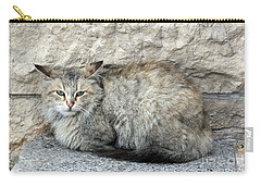 Camo Cat Carry-all Pouch