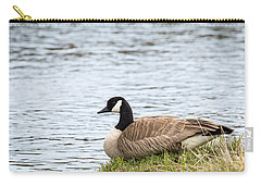 Carry-all Pouch featuring the photograph Canada Goose by Michael Chatt