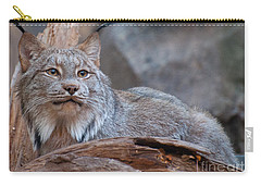 Canada Lynx Carry-all Pouch