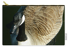 Carry-all Pouch featuring the photograph Canadian Goose Portrait by Emmy Marie Vickers