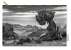 Canyon And Twisted Pine Carry-all Pouch