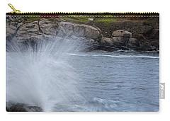 Cape Neddick Dusk Carry-all Pouch