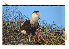 Carry-all Pouch featuring the photograph Caracara In The Dunes by Debra Martz