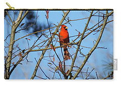 Carry-all Pouch featuring the photograph Cardinal At Burden Center by Lizi Beard-Ward