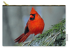 Cardinal In An Evergreen Carry-all Pouch