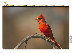 Carry-all Pouch featuring the photograph Cardinal by Jerry Gammon