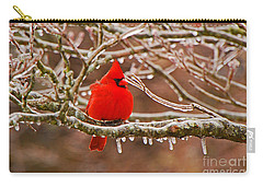 Cardinal Carry-all Pouch by Mary Carol Story
