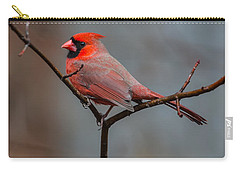 Cardinal Sing Carry-all Pouch