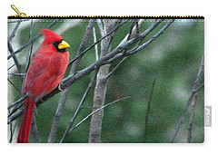 Cardinal West Carry-all Pouch