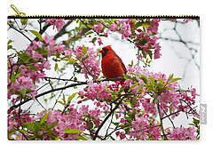 Cardinally Beautiful Carry-all Pouch