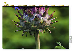 Cardoon Carry-all Pouch by Chris Flees