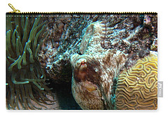 Carry-all Pouch featuring the photograph Caribbean Reef Octopus Next To Green Anemone by Amy McDaniel