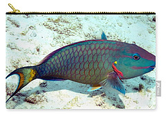 Caribbean Stoplight Parrot Fish In Rainbow Colors Carry-all Pouch by Amy McDaniel