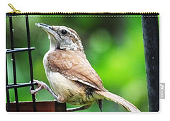 Carolina Wren Carry-all Pouch by Lizi Beard-Ward