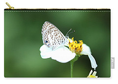 Carry-all Pouch featuring the photograph Cassius Blue On Wildflower by Greg Allore