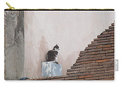 Carry-all Pouch featuring the photograph Cat Above The Roman Ruins by Tiffany Erdman