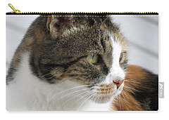 Cat Carry-all Pouch by Laurel Powell