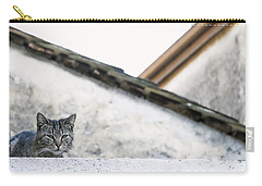 Carry-all Pouch featuring the photograph Cat On A Roof by Brooke T Ryan
