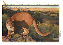 Cat Stretch Carry-all Pouch
