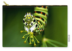 Caterpillar Of The Old World Swallowtail Carry-all Pouch by Torbjorn Swenelius