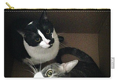 Cats In The Box Carry-all Pouch