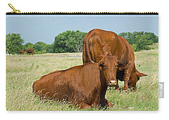 Carry-all Pouch featuring the photograph Cattle Grazing In Field by Charles Beeler