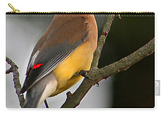Cedar Wax Wing II Carry-all Pouch