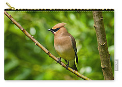 Cedar Waxwing Gathering Nesting Material Carry-all Pouch by Jeff Goulden