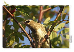Carry-all Pouch featuring the photograph Cedar Waxwing by James Peterson