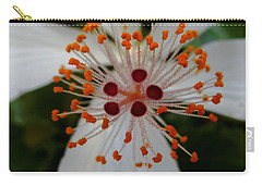 Center Carry-all Pouch by Pamela Walton