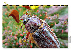 Chafer Beetle On Medusa Succulent 2 Carry-all Pouch