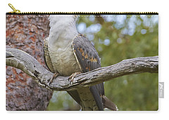 Channel-billed Cuckoo Fledgling Carry-all Pouch by Martin Willis
