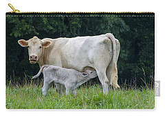 Charolais Cattle Nursing Young Carry-all Pouch by Chris Flees