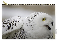 Cheeky Snow Owl Carry-all Pouch