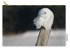 Cheeky Snowy Carry-all Pouch by Cheryl Baxter