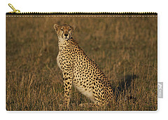 Cheetah On Savanna Masai Mara Kenya Carry-all Pouch by Hiroya Minakuchi