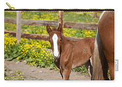 Chestnut Foal Carry-all Pouch