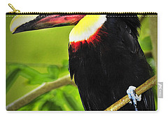 Chestnut Mandibled Toucan Carry-all Pouch