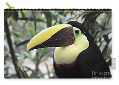 Carry-all Pouch featuring the photograph Chestnut-mandibled Toucan by Teresa Zieba