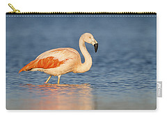 Chilean Flamingo Carry-all Pouch by Ronald Kamphius