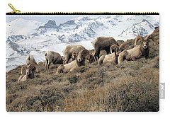 Chimney Rock Rams Carry-all Pouch