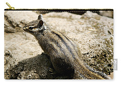Carry-all Pouch featuring the photograph Chipmunk On A Rock by Belinda Greb