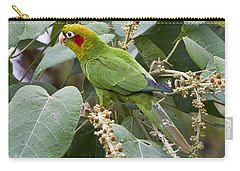 Chiriqui Conure 2 Carry-all Pouch by Heiko Koehrer-Wagner