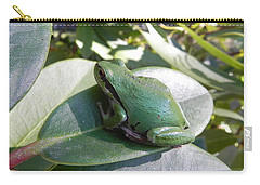 Carry-all Pouch featuring the photograph Chorus Frog On A Rhodo by Cheryl Hoyle