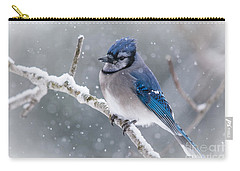 Christmas Card Bluejay Carry-all Pouch by Cheryl Baxter