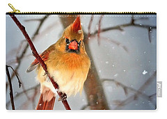 Northern Cardinal Snow Scene Carry-all Pouch