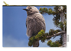 Clark's Nutcracker In A Fir Tree Carry-all Pouch by Jeff Goulden